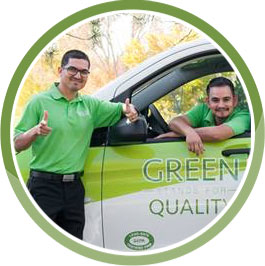 customer-excellence-lime-painting