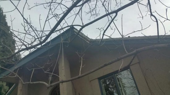 professional carpenters services fascia before
