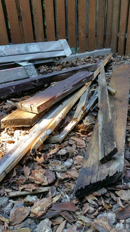 carpentry services rotted boards