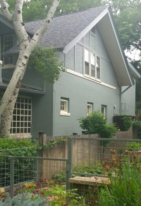 residential and commercial painting vines after